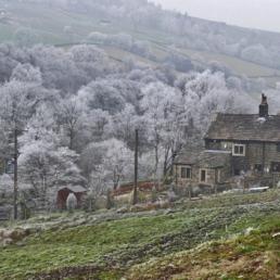 1st. Frosty Morn