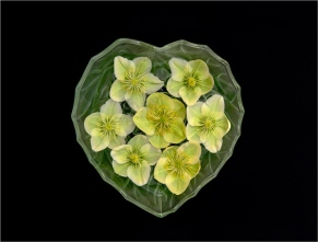 I Love Flowers by Max Sunderland