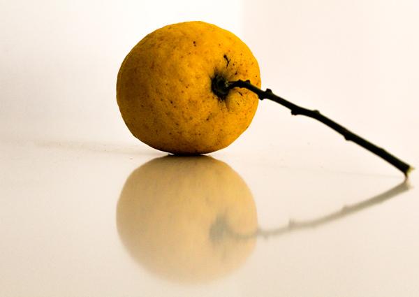 table-top-lemon