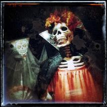 Skeleton Window by Chris Johnson-Standley