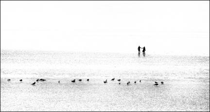 3rd : Beside the seaside by Bill Pilkington